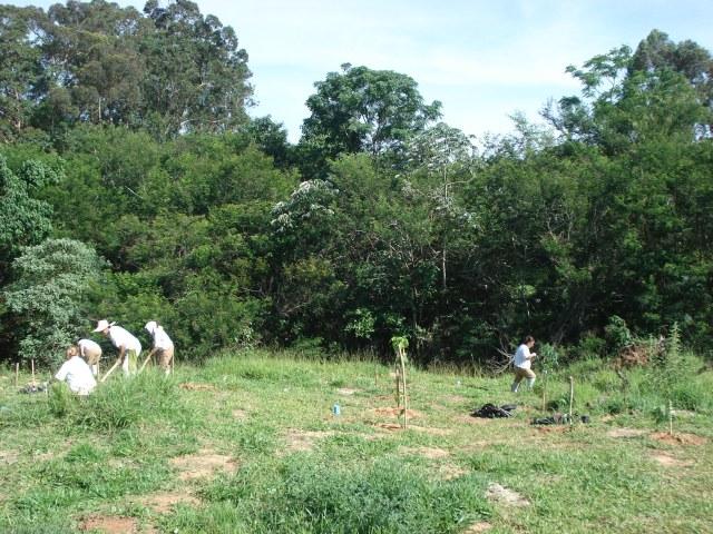Reeducandas realizando o plantio de mudas nativas.