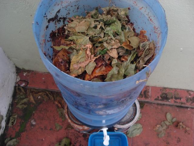 É Fundamental colocar um pouco de folha seca ou serragem na mistura, logo após que por os resíduos orgânicos.