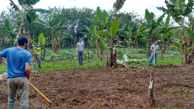 preparação solo área